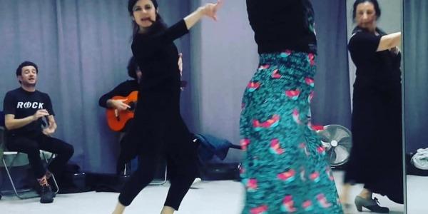 Flamenco Tour